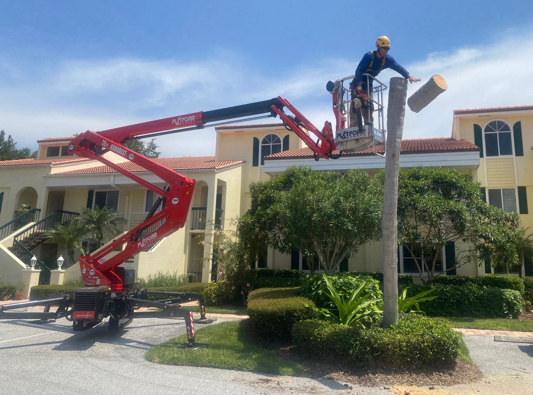 Removing Palm with 72' Tracked Lift
